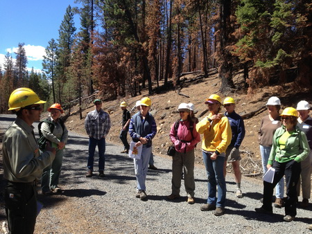 A public field tour in the Deschutes National Forest, Oregon. Resource managers, scientists, and the public discuss management strategies for fire-prone forests such as the Deschutes National Forest.