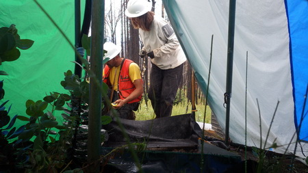 Photo of Forest Service visiting scientists Sergio Prats and Maruxa Malvar (standing) from the University of Aveiro in Portugal prepare for a rainfall simulation. The three rainfall simulator legs and metal plot frame are visible in the foreground. The black matting around the plot was used to capture rainsplash, one component of the erosion within the plot. The tent was used to protect the simulation from wind.