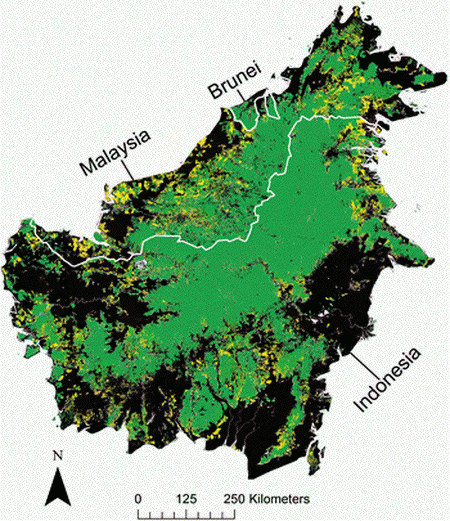Improved predictions of deforestation in Borneo – Research ... on ecological succession map, climate change, hydroelectric dams map, land pollution, transboundary pollution map, environmental issue, world map, ozone depletion, exploitation of natural resources, global warming map, land degradation, groundwater depletion map, pesticide use map, greenhouse gas, species extinction map, glacier melt map, global warming, ecological footprint map, environmental degradation, water depletion map, tree plantation map, intensive farming map, danish language map, illegal logging, mass extinction map, forest reserves map, land use map, indoor air pollution map, environmental problems map, genetically modified crops map,