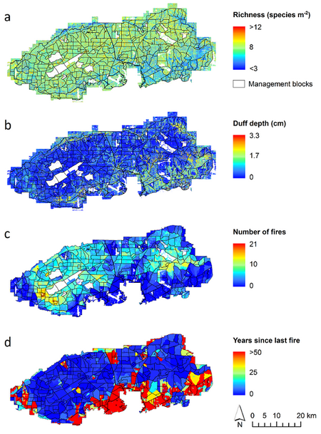 RMRS-2017-211; 1) Plant species richness (a) and duff depth (b) related to the imputed overstory responses via plot ID. Also shown are the fire history variables number of fires (c) and years since last fire (d). 2) Imputations of trees per hectare (a), basal area (b) and dominant tree species (c) from airborne LiDAR across Eglin AFB, and Plot ID (d) imputed as an ancillary variable (i.e., having no weight in the model).
