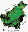 Photo of Map of Borneo showing areas of forest loss between 2000 and 2010 in yellow, areas of forest persistence from 2000 to 2010 in green, and areas that were not forest in 2000 in black.
