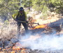 Photo of Fire prevention specialist Bob Blasi works to contain a small wildfire on the Tusayan Ranger District, Kaibab National Forest, Arizona.