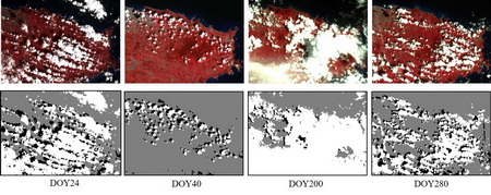 Photo of False color composite of the four representative Landsat MSS images – the older images that go back to the 1970s, in Puerto Rico, and their cloud and shadow masks by the new method, ATSA2 (gray: clear pixels; black: shadows; white: clouds, DOY = Day of Year)