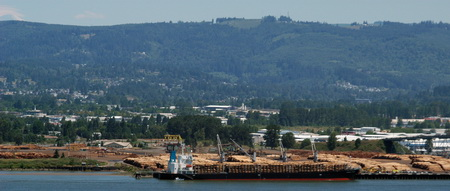 Photo of Coos Bay, Oregon, historically supported a diversity of logging and milling operations.