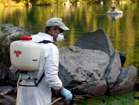 Photo of Wilderness managers in North Cascades National Park opted for chemical treatments to remove invasive fish species (Photo by National Park Service staff).