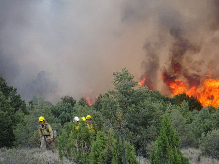 Photo of A firefighter crew hiking out from a wildland fire burning in a pinyon-juniper woodland along the Utah-Nevada border.