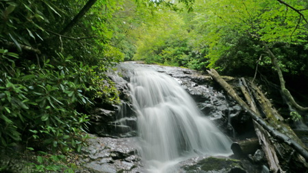 Photo of Forests protect and enhance multiple values of water resources. 34535243073_1f4737e4b3_o.jpg
