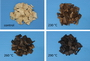Wood chips torrefied at different temperatures. USDA Forest Service.
