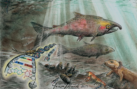 Photo of 'Watermarks', an illustration by Laura L. Hauck, USDA Forest Service, shows the biodiversity of an aquatic ecosystem that's encompassed in the transient traces of environmental DNA left behind by the inhabitants. They are like hidden watermarks, when detected they can reveal the diverse assemblage of species present in and around the body of water.