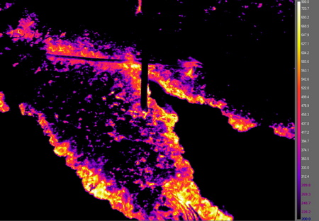 Photo of False color infrared image of heat energy in a prescribed fire in longleaf pine. The ability to capture the complexity of energy release in space and time can provide critical data for predicting forest response to the fire. Data such as these have revolutionized the field of fire ecology.