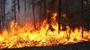 Photo of Wildland fire.