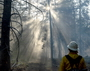 Photo of A firefighter walks through the Donnell Fire in the Stanislaus National Forest, California.