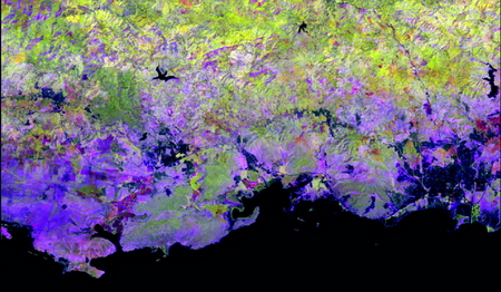 Photo of Landsat image greenness metrics for the years 2010-2014 in Puerto Rico. Magenta areas have low minimum and maximum vegetation greenness and less photosynthesis overall. Darker greens are semi-deciduous dry forest patches which have greater minimum greenness. Bright yellow and bright green have high greenness all year.