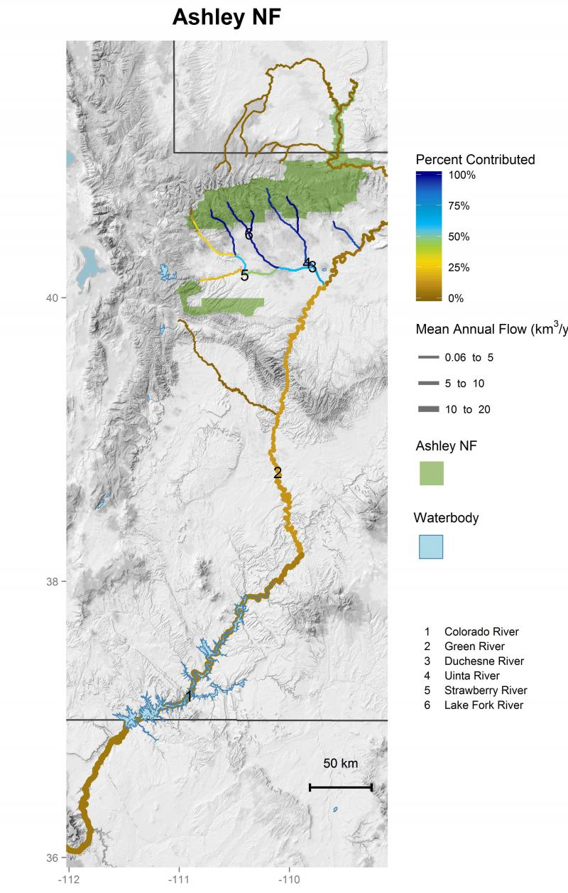 Ashley National Forest streamflow contributions