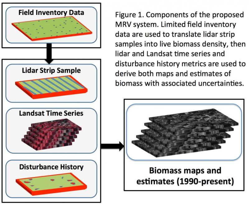 Components of the proposed MRV System. Limited field inventory data are used to translate lidar strip samples into live biomass density, then lidar and LandSat time series and disturbance history metrics are used to derive both maps and biomass estimates