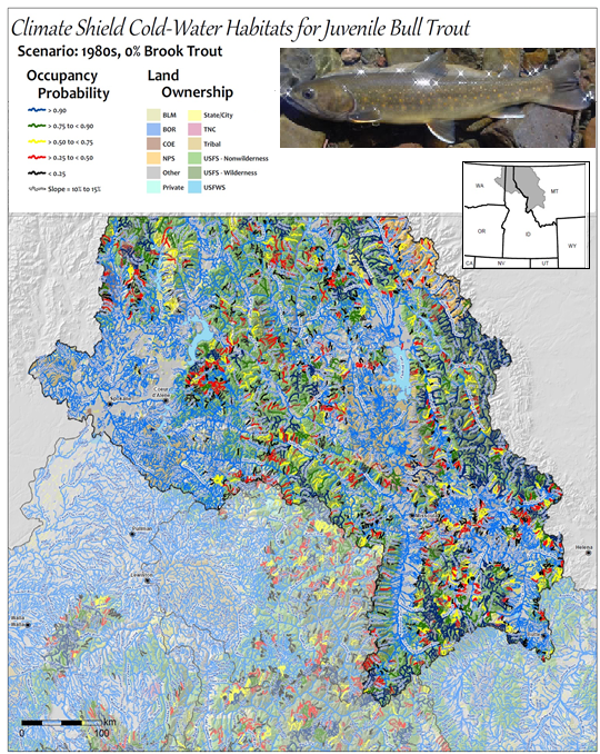 Modeled bull trout habitat in western Montana and northern Idaho. Color coding indicates the estimated likelihood of a stream providing spawning and rearing habitat for bull trout (Isaak et al. 2015)