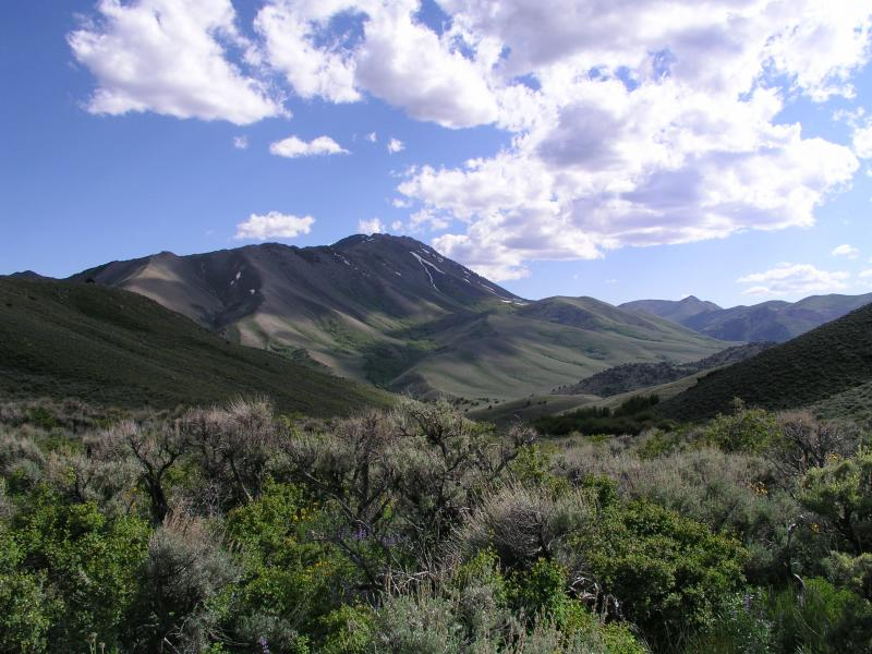 Sagebrush ecosystem in the Toiyabe Range, Nevada (photo: Jeanne Chambers, USDA Forest Service)