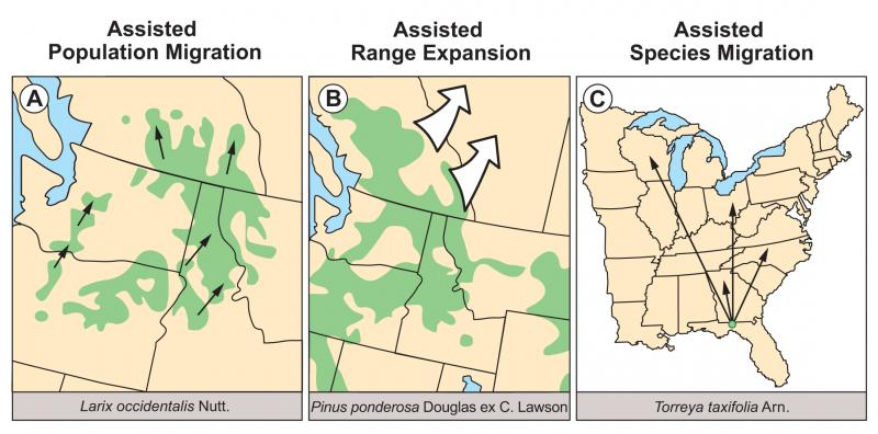 Illustration of assisted population migration, range expansion, and species migration (from Williams and Dumroese 2013).