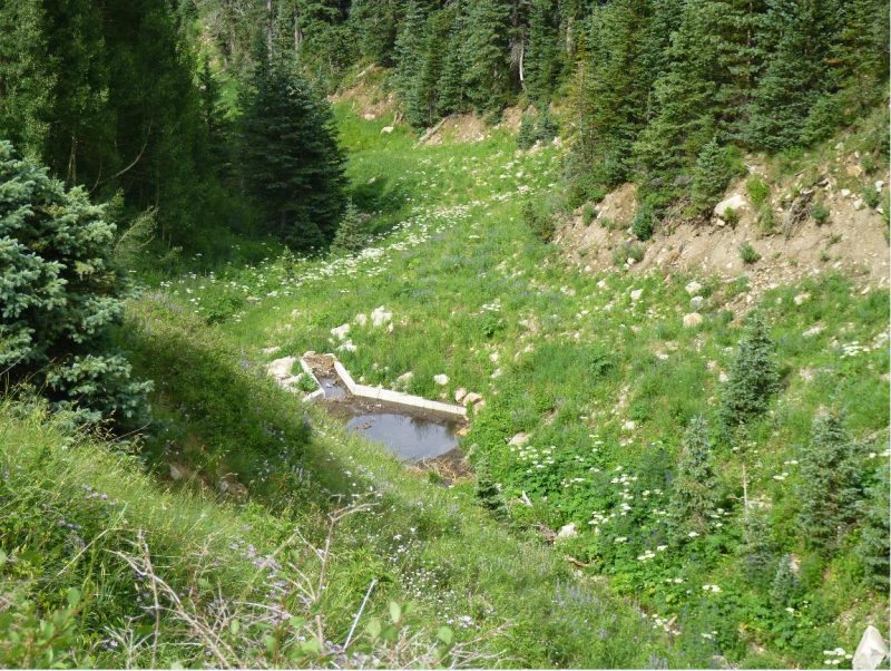 This photograph shows a drain in North Creek Canyon on the Manti-La Sal National Forest. It is one of many diversions in the Abajo Mountains. Surface flows and riparian vegetation are absent below the drain. (Photo by D.M. Smith, USFS)
