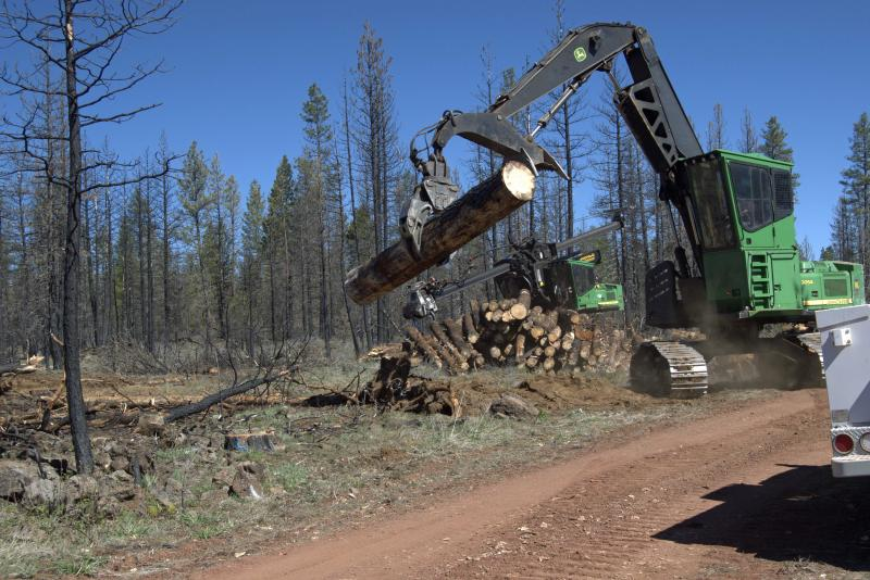 Salvaging logging of the Frog Fire
