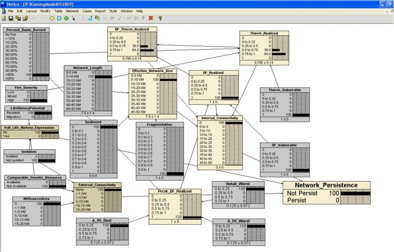 Screen shot of the IF3 model architecture.