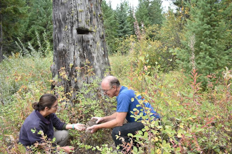 Two researchers crouch at the base of a tree to collect soil samples. The are they are in is densely vegetated.