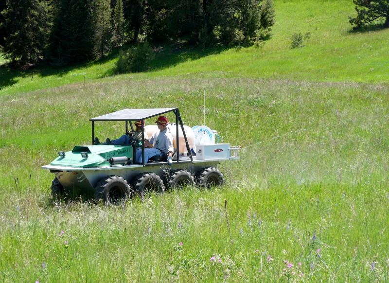 Herbicide treatment targeting the invasive plant, spotted knapweed, in Montana.