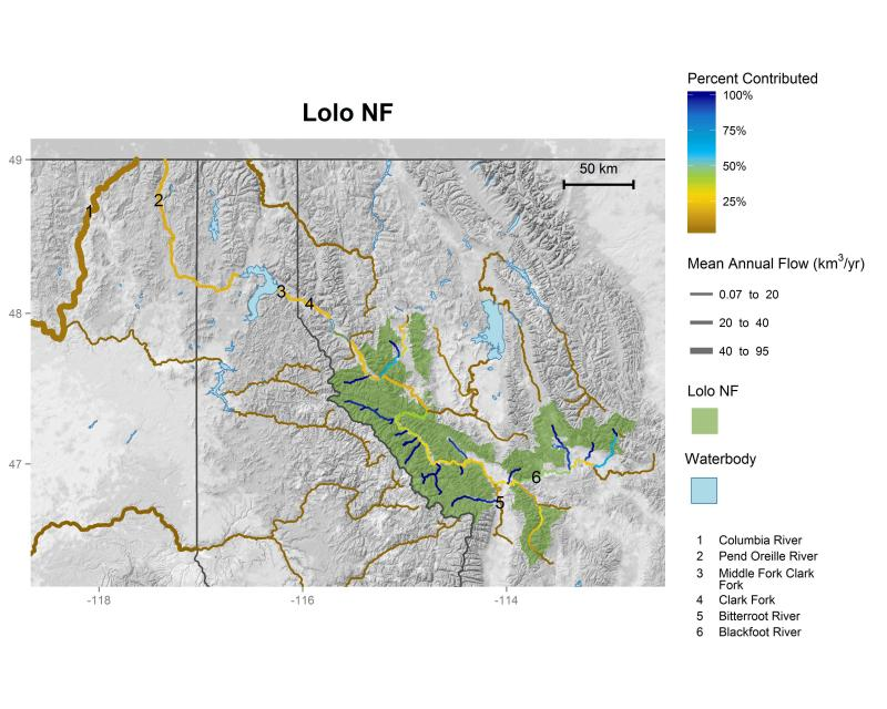 Lolo National Forest streamflow contributions