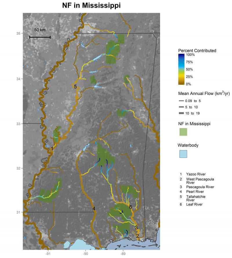 Streamflow contributions of national forests in Mississippi