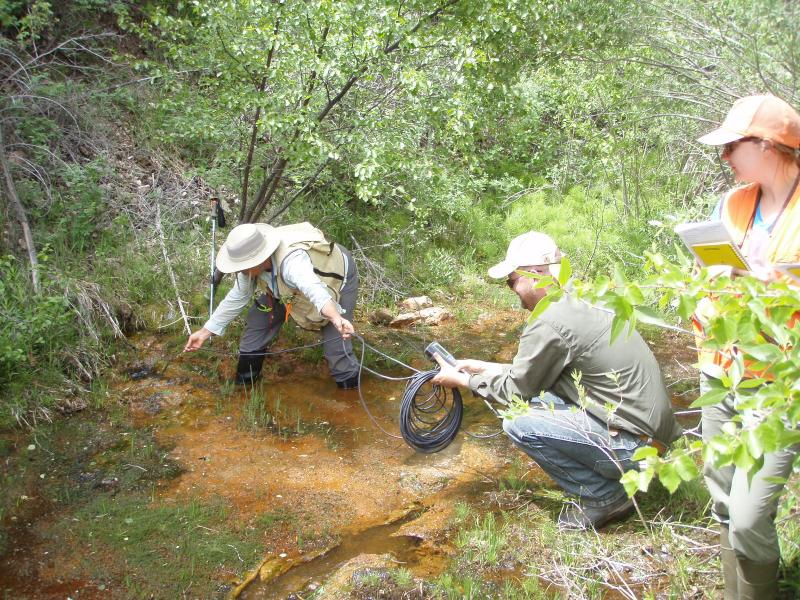 Researchers and land managers partner to collect groundwater dependent ecosystems data.