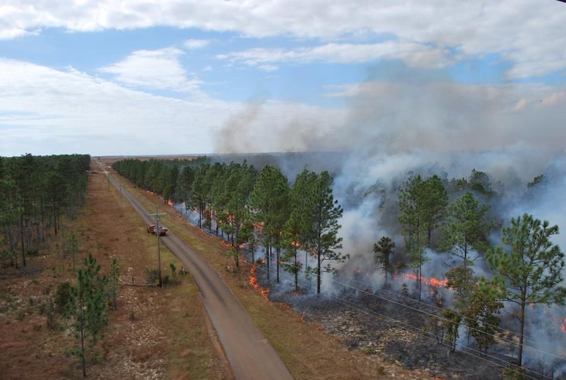 Prescribed burn experiment at the Eglin Air Force Base, FL (2012) photo by Roger Ottmar, Pacific Northwest Research Station