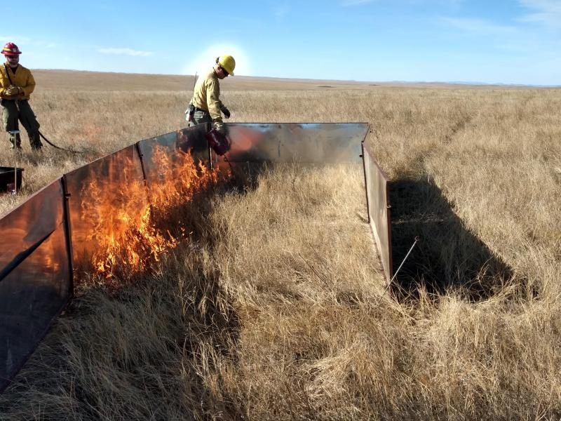 Fire crews light a burn box on a grassy plain in South Dakota
