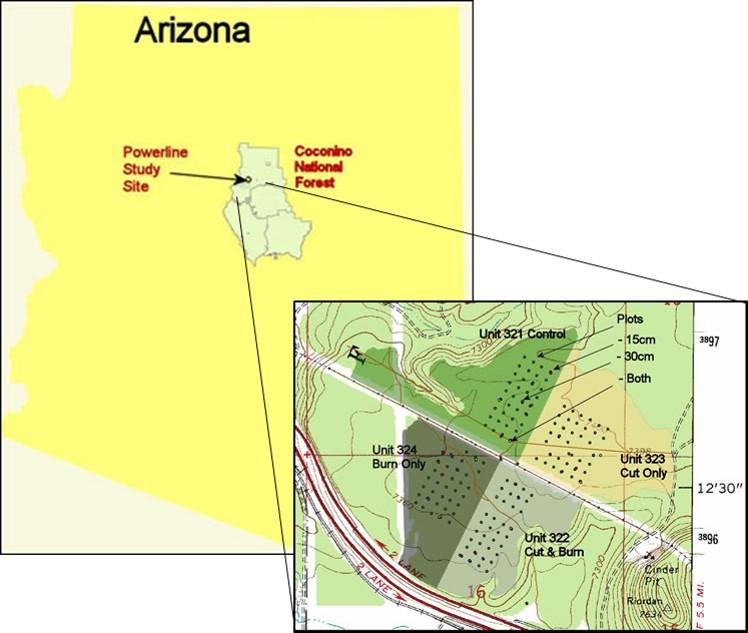 Location of the powerline site on the Coconino National Forest and experimental units within the site.