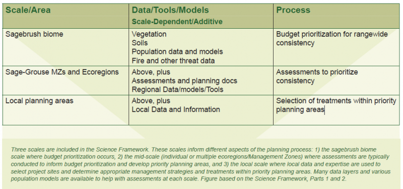 A table showing the 3 scales included in the science framework for the planning process: sagebrush biome scale (budget), the mid-scale (assessments for budget prioritization), and local planning areas (selecting sites and choosing management strategies)