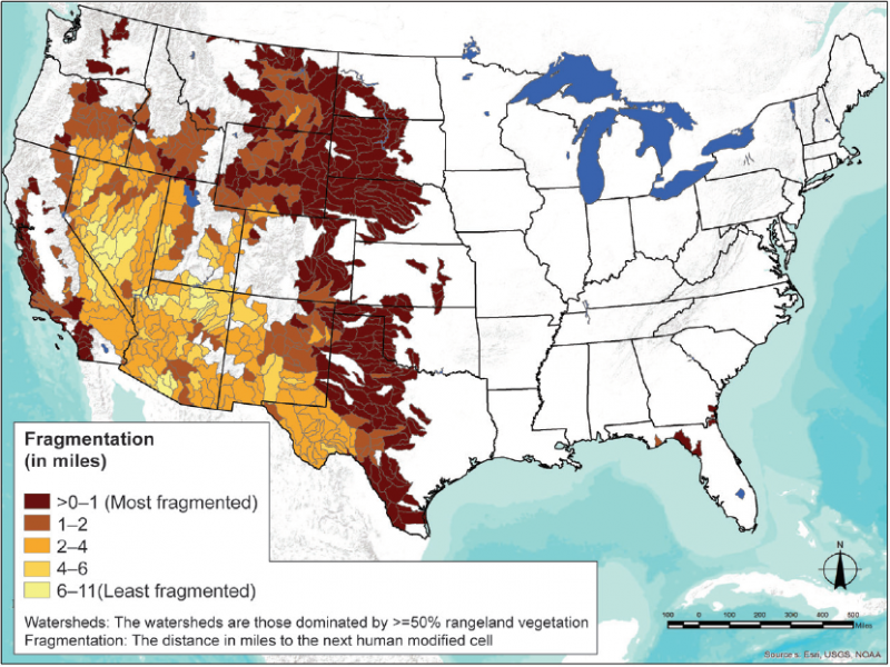 This graphic, Rangelands on the Edge, shows aspects of conversion, including watershed fragmentation. The darkest red color, concentrated in the midwest of the U.S. from Texas to Montana, represents the most fragmented rangeland watersheds.
