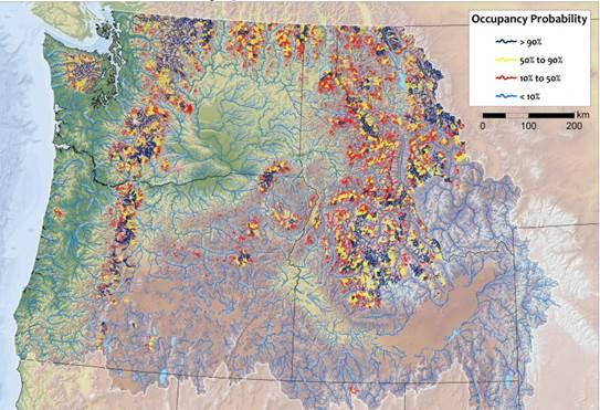 Map of climate refuge streams for native bull trout.