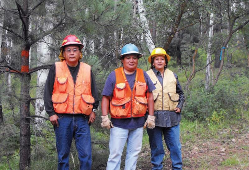 Members of the White Mountain Apache Tribe participating in forest restoration on the Apache-Sitgreaves National Forest.