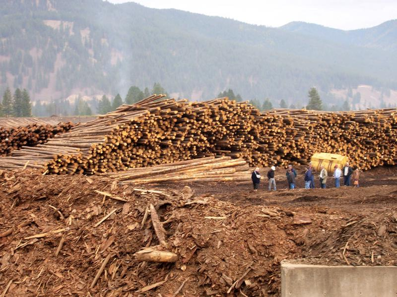 The harvesting and burning of woody biomass for energy is an emerging use of forest products.