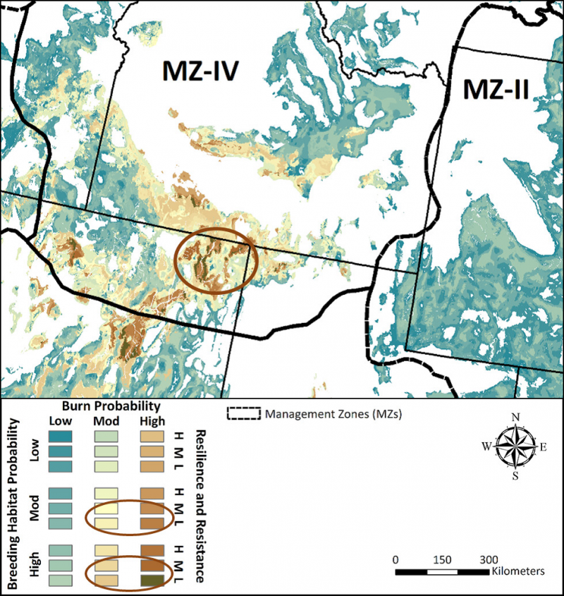 This map from Part 2 of the Science Framework (figure x) combines a wildland fire risk map (described in Part 1) with sage-grouse breeding habitat probabilities to show vulnerable areas.