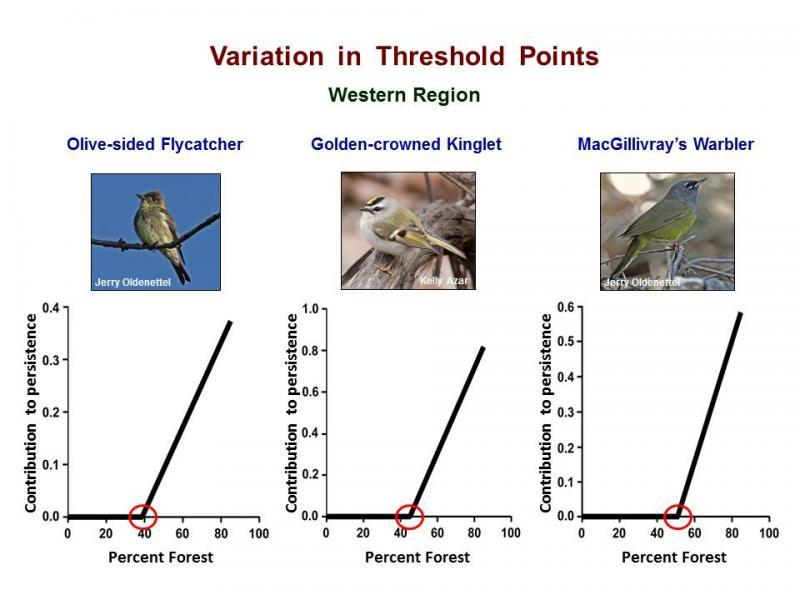 Forest amount thresholds for three species of birds that breed in the Western region. Variation among species may complicate management directed at the assemblage of forest breeding bird species.