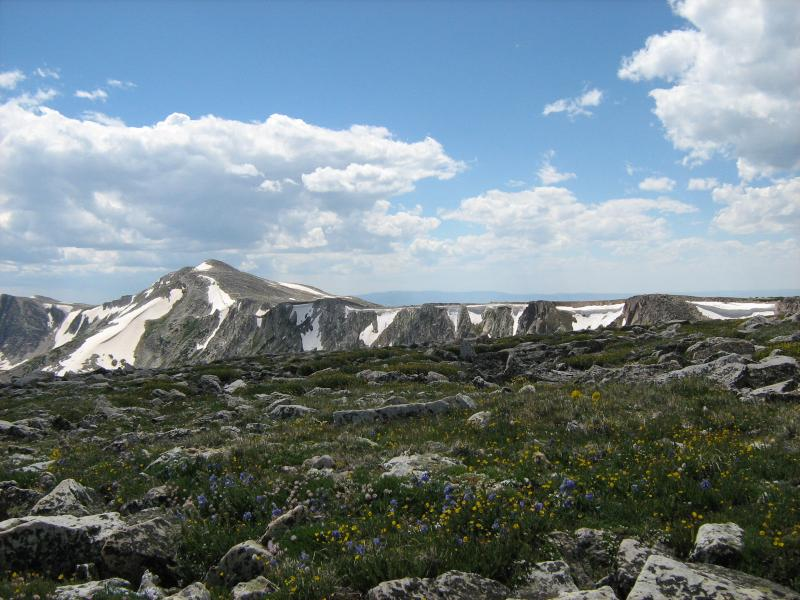 Alpine meadow from the top of Brown's Peak in the Snowy Range of Southeast Wyoming with Medicine Bow Peak in the background.  There are 127 known alpine plant species on these two peaks. Photo: Jim Fowler, 6/14/14