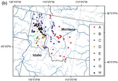 Sculpins distribution throughout the upper Columbia and Missouri River basins