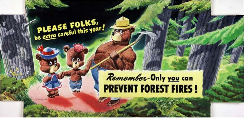 More than 70 years after Smokey Bear was created to educate the U.S. public about forest fire danger, WUI communities are increasingly taking responsibility for wildfire prevention.