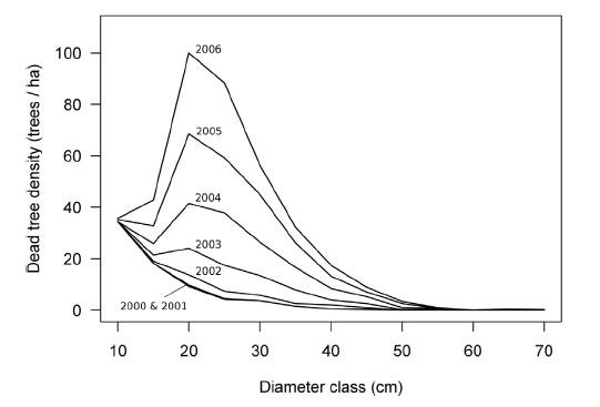 The structural sustainability index characterized the changes by 2006 as unsustainable as a result of high mortality (greater than baseline) in the 20-40 tree diameter classes.