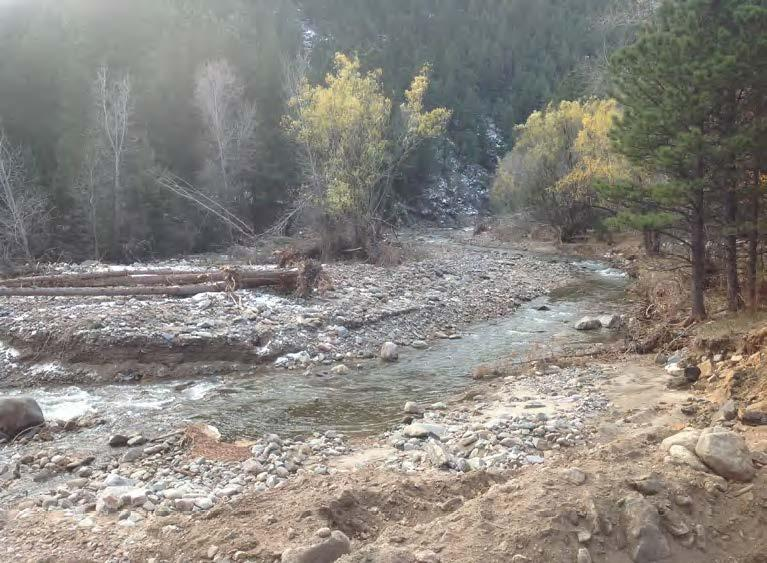 Miles of stream channels on National Forest System lands were scoured, widened, aggraded, or relocated as a result of the flooding, affecting fisheries, riparian areas, and roads. (Image credit: Sarah Hines, U.S. Forest Service)