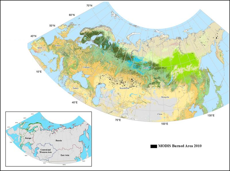 MODIS-detected burned area in Northern Eurasia in 2010 as used in the simulation model