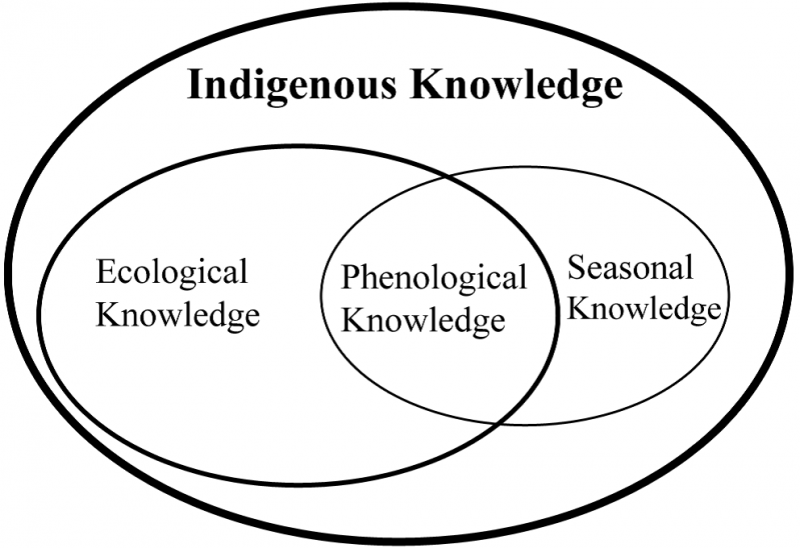 Phenological Knowledge Diagram (found in publication)