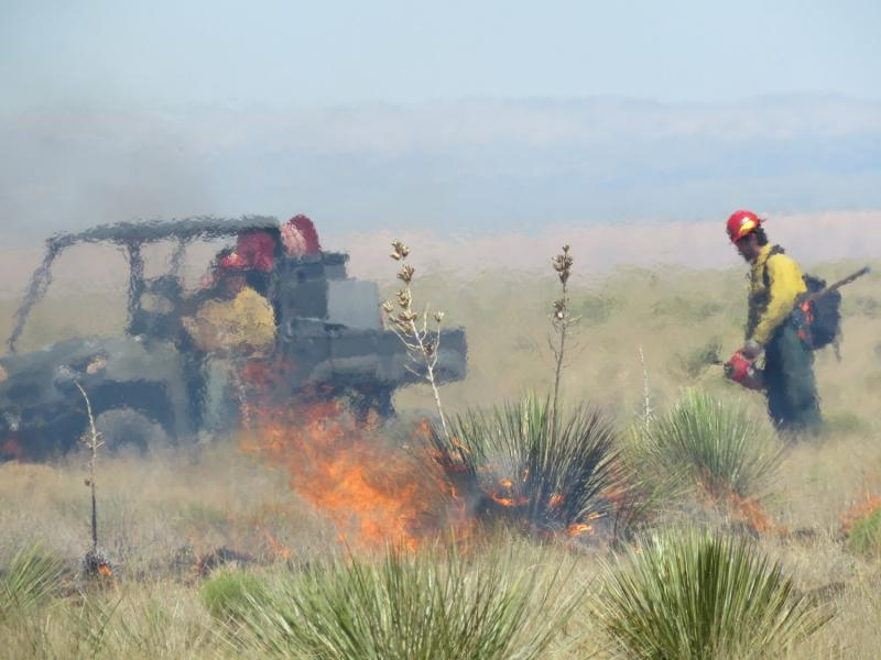 An image of a prescribed burn with a ATV with fire tools and a firefighter administering the fire using torches. The image is hazy due to the heat from the fire. A yucca plant in the center of the image is on fire among an otherwise light green landscape