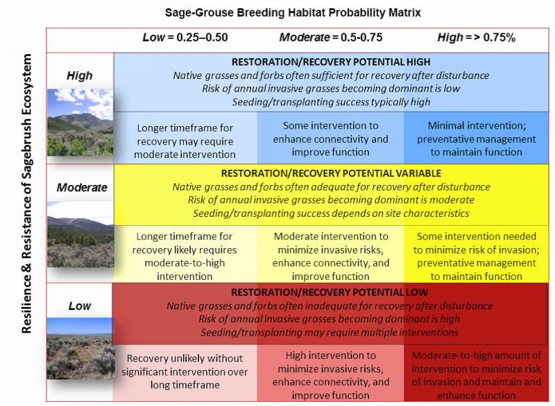 This sage-grouse habitat resilience and resistance matrix combines resilience and resistance with the probability of an area providing sagegrouse breeding habitat.