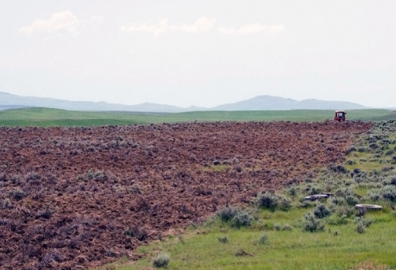 A photo of a prairie, a tractor is visible in the distance. The conversion of a sagebrush ecosystem in the West-Central Semiarid Prairies to agricultural land. (Photo: John Carlson)